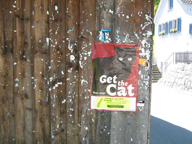 Get the Cat on Tour!